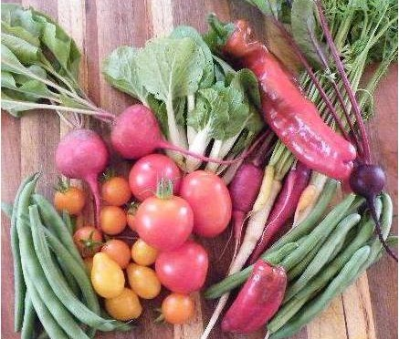 Buy Organic Vegetables for Non-Toxic Reason